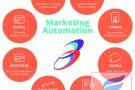 Marketing Automation cách nuôi dưỡng hiệu quả cho doanh nghiệp B2B