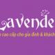 Mr Khiêm - CEO lavender